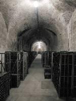 zrání vína